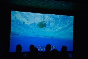 "Preisgekrönte Kino-Doku ""A Plastic Ocean"" / Foto: Verleih"